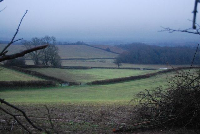 Fields near Bicknoller