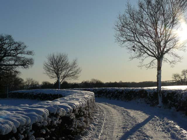 Farm track in the snow