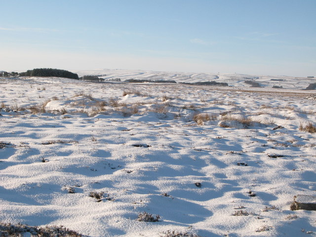 Snowy moorland west of Crawberry Hill
