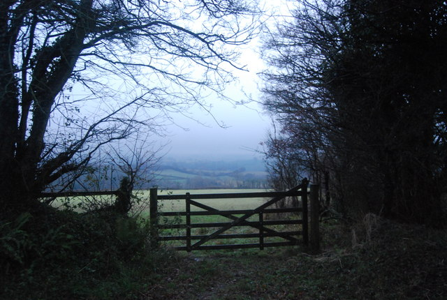 A gate with a view, Thorncombe Lane
