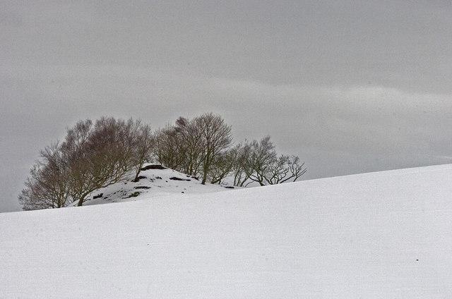 Mound at Brownlow