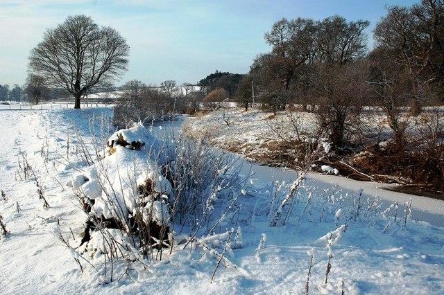 Snowy Kilkerran