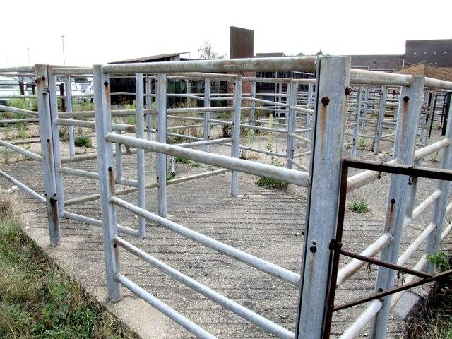 Cattle Market, Horncastle