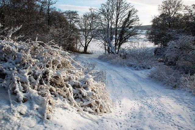 A Snowy Farm Track
