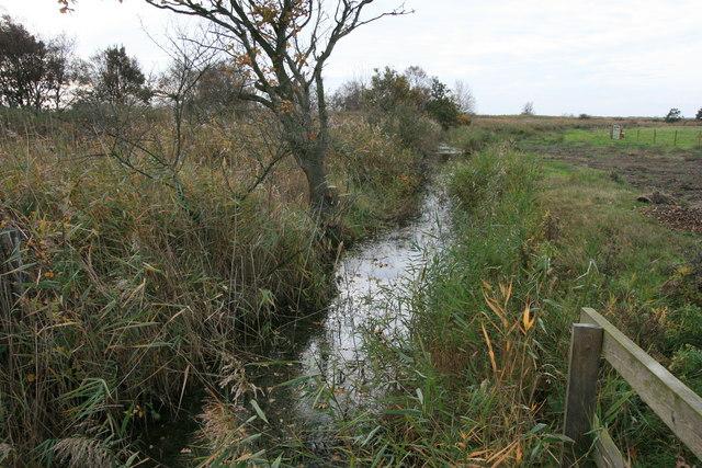 Ditch near Horsey Mere