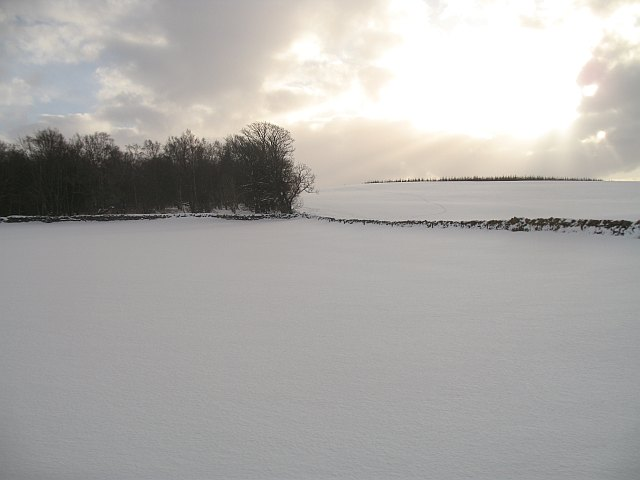 Woodheads Hill