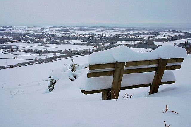 Seat, Larners Hill