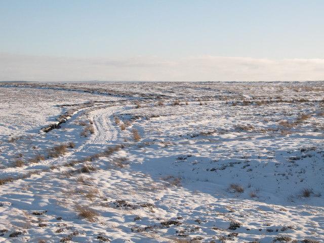 Snowy panorama from the Foumart Hills (2: ESE - Burntridge Moor)