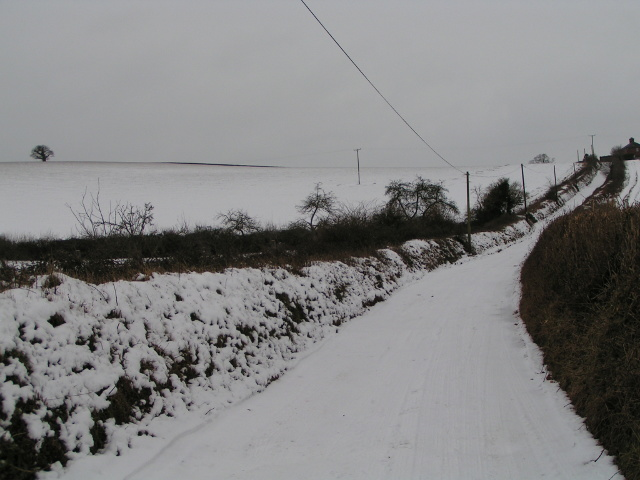 Lane from Bidwell to Bidwell Cross