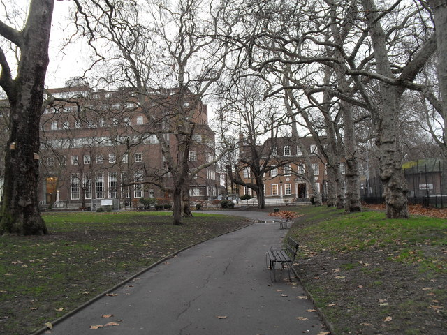 Looking from a wintry Brunswick Square Gardens towards the Foundling Museum