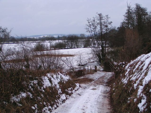 Farm track into a field in the Exe valley