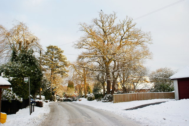 Rook Lane, Chaldon, Surrey