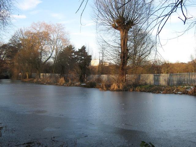 Markeaton Lake from Sturgess Fields, Derby