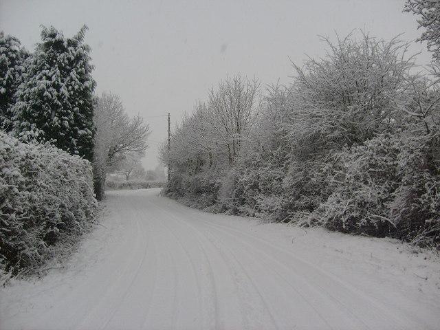 A snowy Lodge Lane