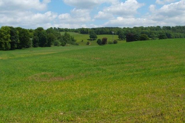Field beside the Clyde Walkway