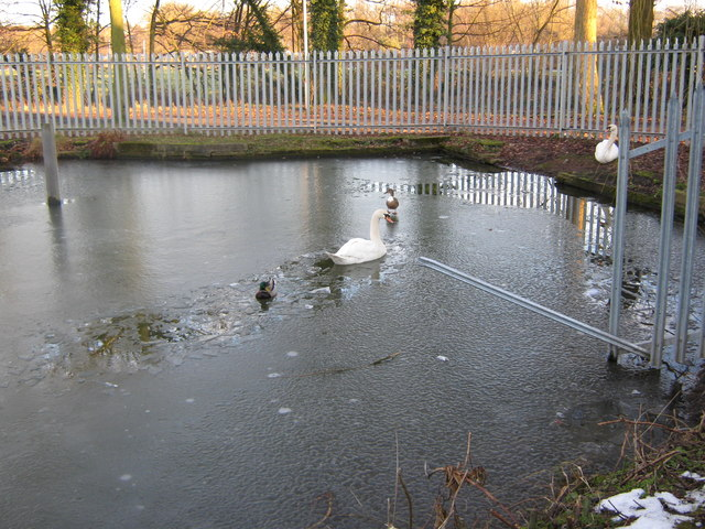 Markeaton Lake near Sturgess Fields, Derby