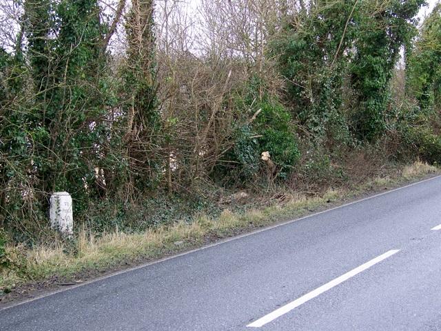Milestone near Spetisbury