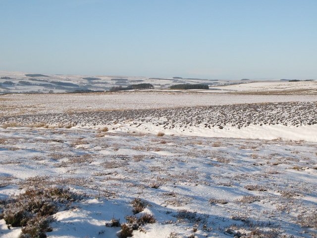 Snowy panorama from the Foumart Hills (10: WNW - Moorhouse Gate)