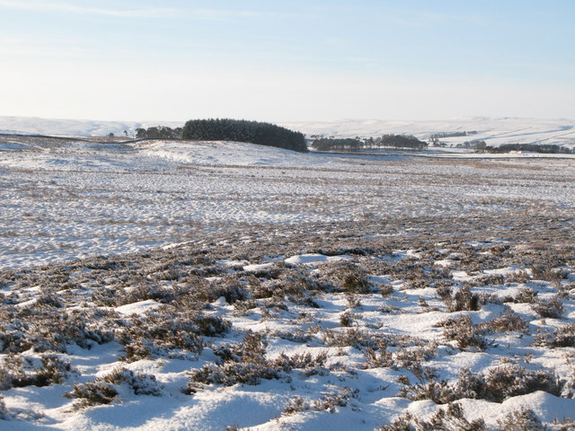 Snowy panorama from the Foumart Hills (13: SW - Glenhill Plantation)