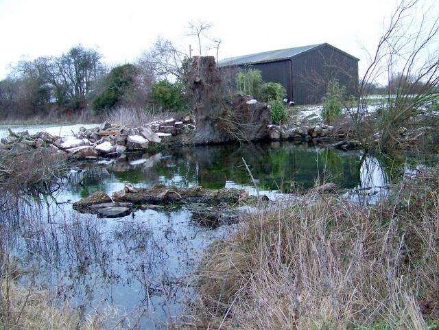 Pond near Dorset Springs Trout Farm