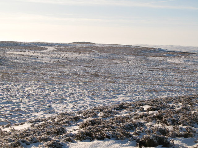 Snowy panorama from the Foumart Hills (14: SSW - Herds Law and Green Hill)