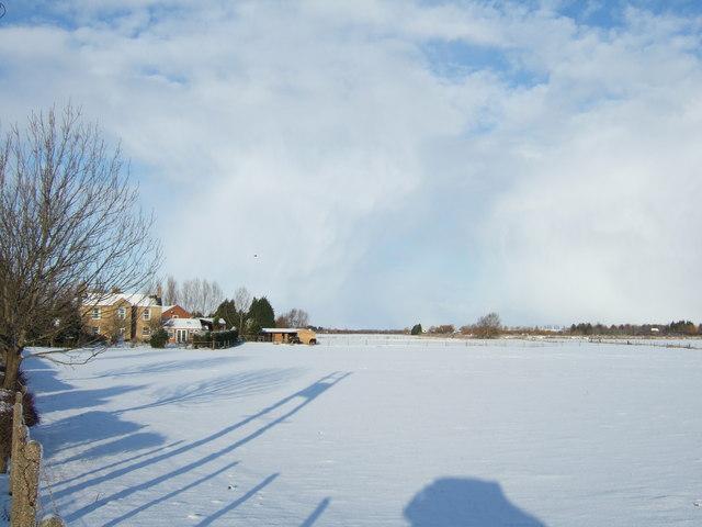 Long shadows on the snow