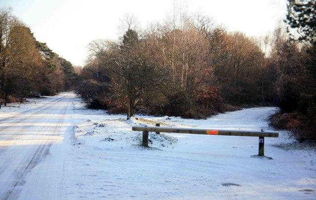 No way through Clumber park