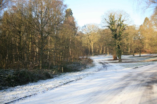 Clumber park road junction in the snow