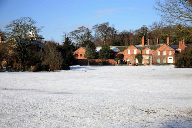 Clumber in the snow