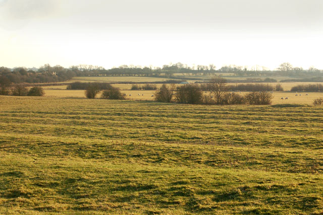 Ridge and furrow south of Willoughby