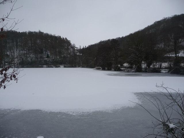 Frozen pool near The Wrekin
