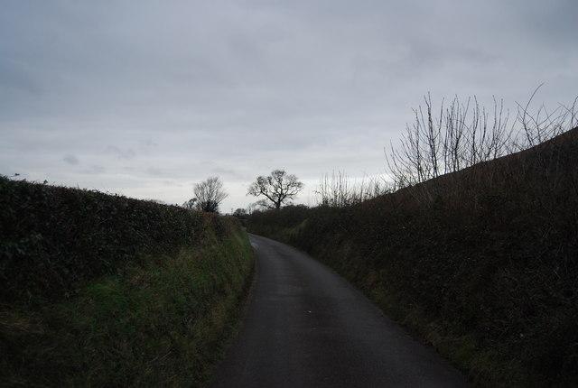 Lane to Bossington