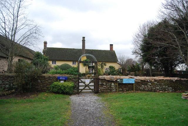 Tea Gardens, Exmoor Falconry & Animal Farm