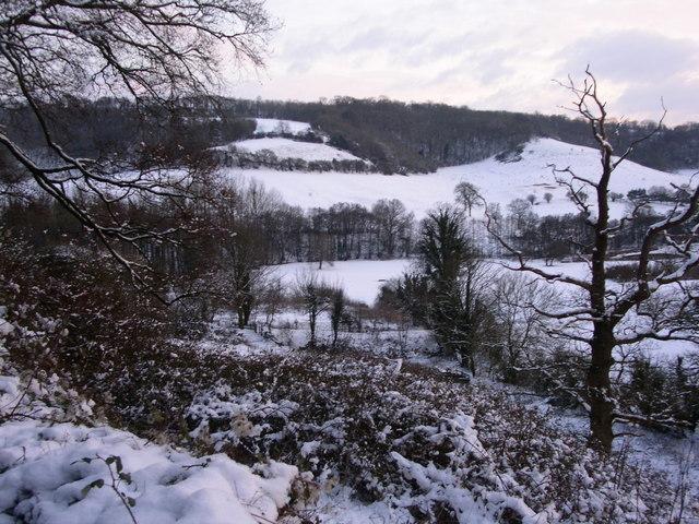 The hill behind Whitehall farm