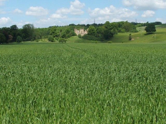 Field near Cambusnethan House