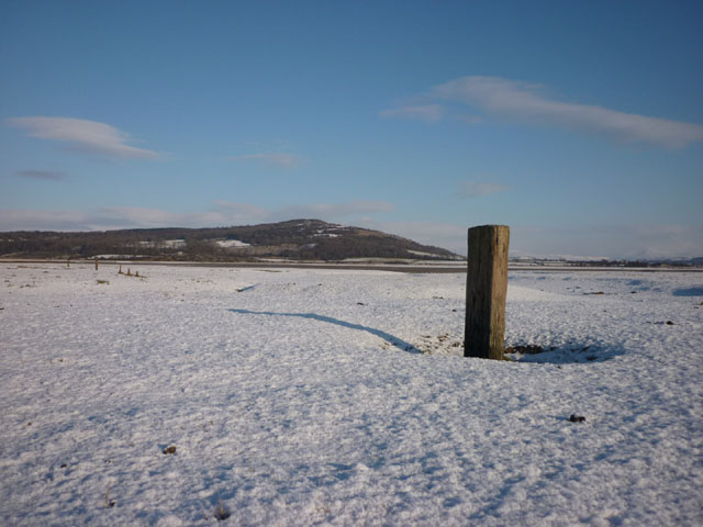 Old fence line, Warton Sands