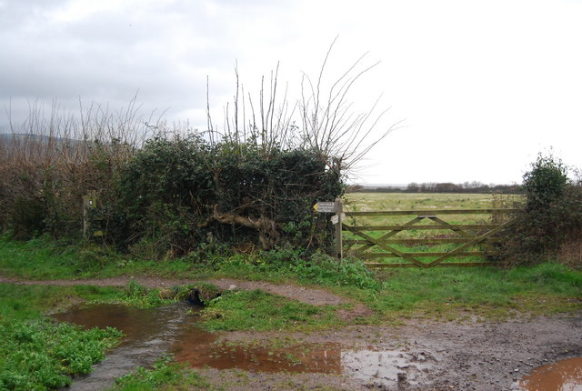 Footpath junction north of Bossington