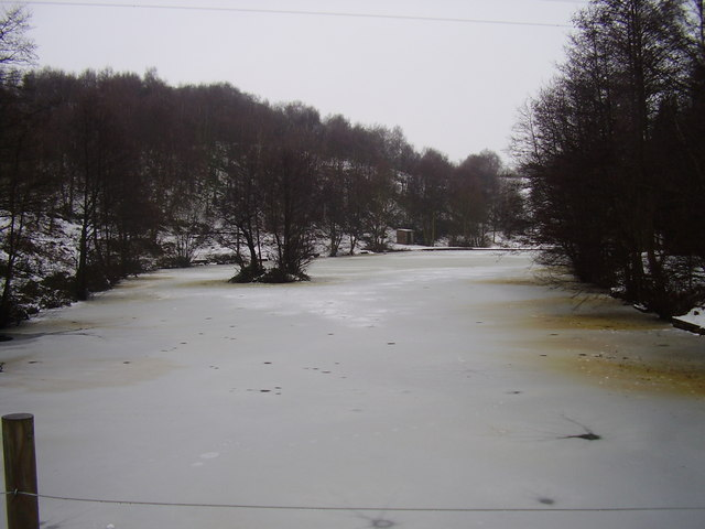 Frozen pond at Ravenfied park