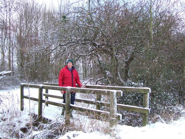A strong footbridge