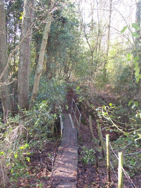 Boardwalk to the footbridge near Copthall Wood
