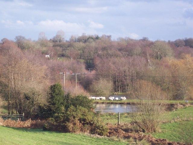 Ponds near Owl's Castle Cas