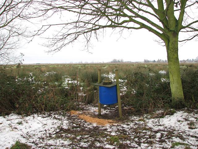 Game bird feeder on the edge of Hardley Marshes