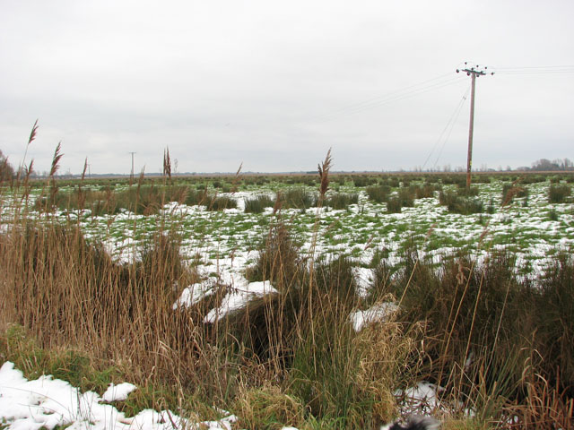 Hardley Marshes in the snow