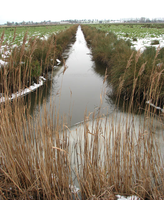 Ice still lingering on ditch in Hardley Marshes