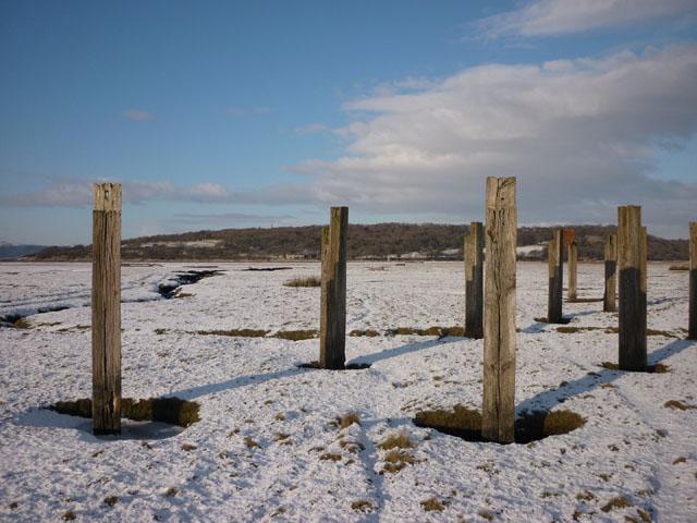 Posts on the saltmarsh, Warton Sands