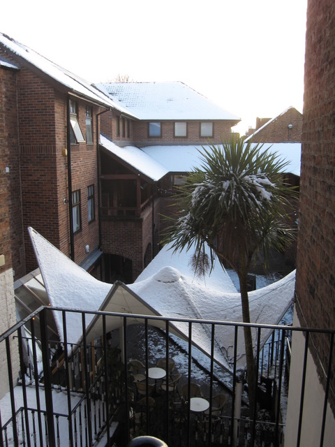Rufus Court in the snow