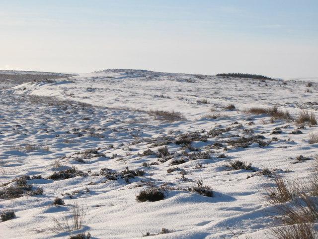 Snowy Foumart Hills