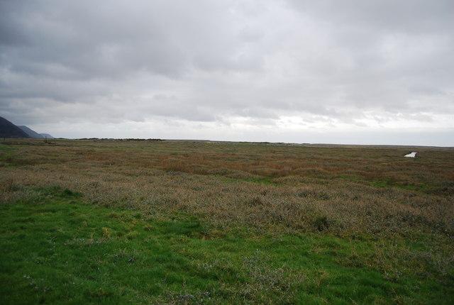 Salt Marsh, Porlock