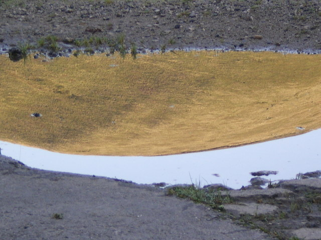 Summit of Middle Knoll in a puddle