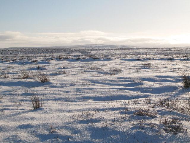 Snowy Burntridge Moor east of Crawberry Hill